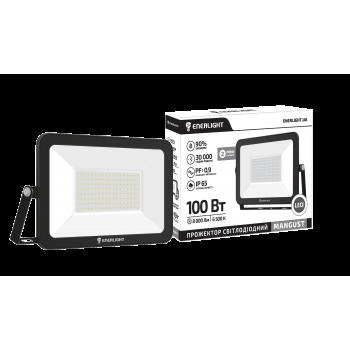 Прожектор светодиодный Enerlight Mangust 100Вт 6500K