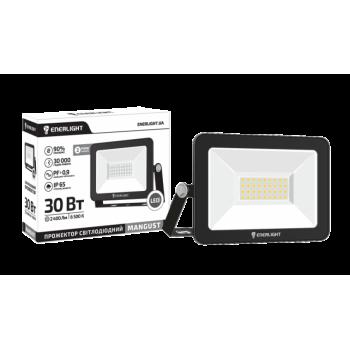 Прожектор светодиодный Enerlight Mangust 30Вт 6500K
